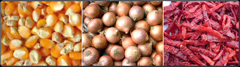 Welcome to Hamid International Products Onion, Groundnuts, Cashew
